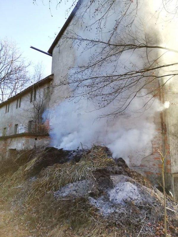 B02- Müll-Cont vom 17.02.2019  |  FFW Wagnitz (2019)